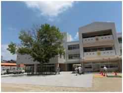 大仙西小学校のプラタナス